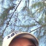 Profilbild på Frasse